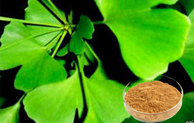 Standardized Ginkgo Biloba Leaf Extract For Health Care Products