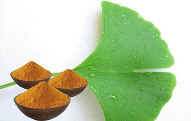 Standardized Ginkgo Biloba Powder , Natural Ginkgo Leaf Extract
