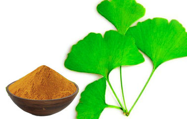 China Low Pesticide Residue Ginkgo Biloba 24 6 Extract For Pharmaceutical Raw Material factory